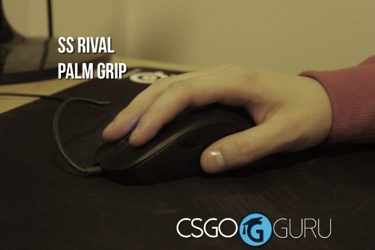 steelseries rival palm grip