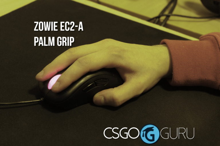 zowie ec2a palm grip 2